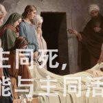与主同死,  才能与主同活  ——基督徒生命成长的秘诀
